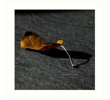 Tinted Leaf Art Print