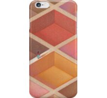 Ethnic Maze iPhone Case/Skin