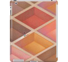 Ethnic Maze iPad Case/Skin