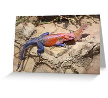 East African Rainbow Agama, Mating Greeting Card
