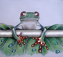 Mister Frog by Argeni