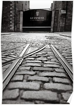 Guinness by Paul O'Connell