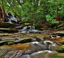 Lower Somersby Falls by Len  Gunther