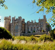 Arundel Castle by Susan A Wilson