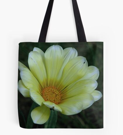 Yellow Gazania 3 Tote Bag