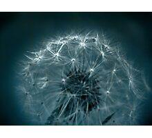 Wishing Photographic Print