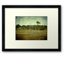 Racecourse Lagoon, Uralla, New South Wales Framed Print