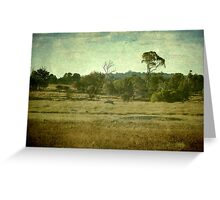 Racecourse Lagoon, Uralla, New South Wales Greeting Card