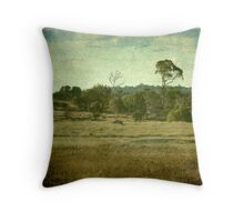 Racecourse Lagoon, Uralla, New South Wales Throw Pillow