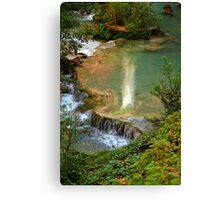 Moony Falls Reflection Canvas Print