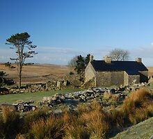 Ditsworthy Warren Farm: Dartmoor Devon by DonDavisUK