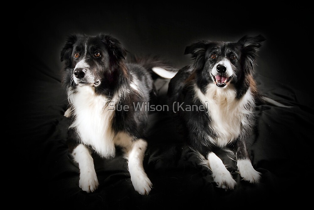 Max and Kiera by Sue Wilson (Kane)