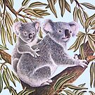 Koalas in a Gum Tree by joeyartist