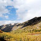 Lamoille Canyon, Nevada by JVBurnett