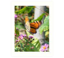 Flutter. Art Print