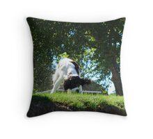 Wet Dog Throw Pillow