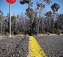 Snowgum Stop Sign by Mick Moloney