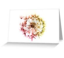 Dandelion Seed Head 4 Greeting Card