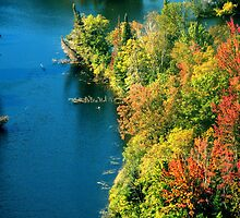 Algonquin River View by LeftHandPrints