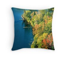 Algonquin River View Throw Pillow