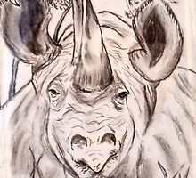 Rhino by Daveart