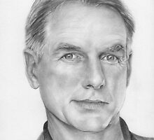 Jethro aka Mark Harmon by Karen Townsend