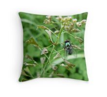 Blowfly resting Throw Pillow