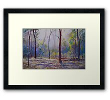 'Moody Bush Blues' Framed Print