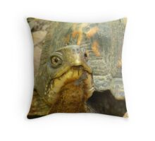 Smile!! Throw Pillow