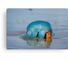 Blue Jellyfish 01 Canvas Print