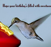 Hummingbird Birthday Greetings by Bonnie T.  Barry