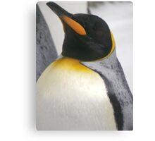 proud penguin Canvas Print