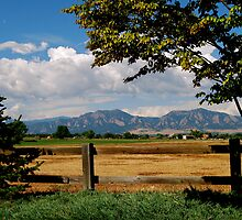 Colorado Flatirons by Pamela Hubbard