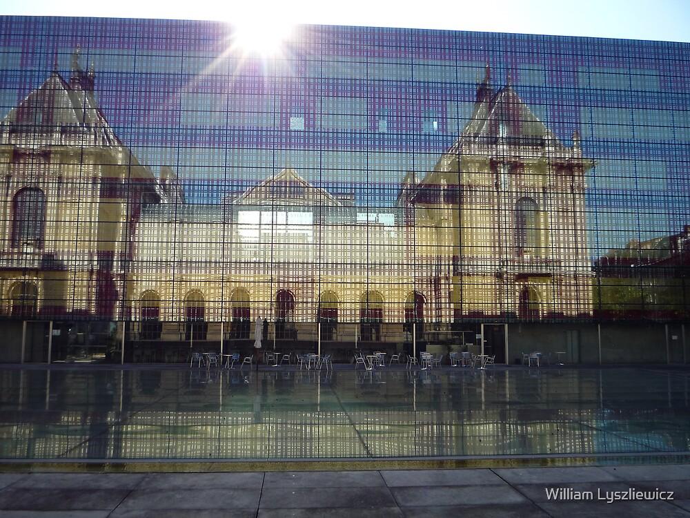 musée des Beaux Arts de Lille by William Lyszliewicz