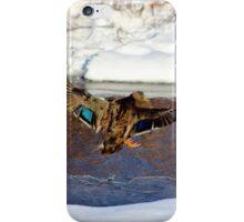 Landing Gear is Down! iPhone Case/Skin