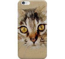 Mister Sprinkles; Tabby Cat iPhone Case/Skin