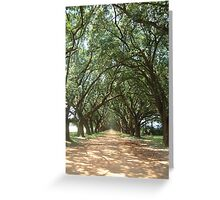 Country Drive Greeting Card