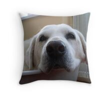 Now This Is A Close Up! Dog Eat Dog World Throw Pillow