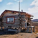 Alaskan Cabin on the Tundra by Patricia Montgomery