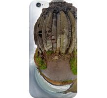 The Giant's Organ Pipes iPhone Case/Skin