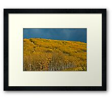 Autunm Hill Framed Print