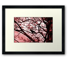 Wait Framed Print