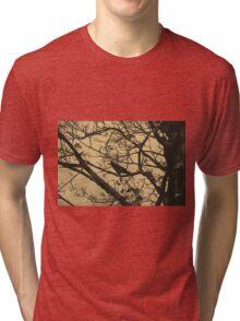 Branches Tri-blend T-Shirt