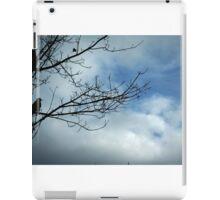 Look iPad Case/Skin