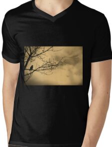 Balance Mens V-Neck T-Shirt