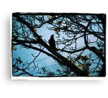Pose Canvas Print