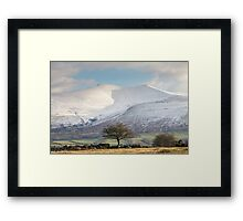 One Tree, One Mountain Framed Print