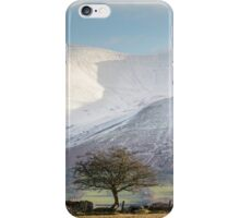 One Tree, One Mountain iPhone Case/Skin