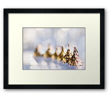 It's not that chocolates are a substitute for love. Love is a substitute for chocolate. Framed Print