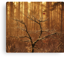 Last leaf left Canvas Print